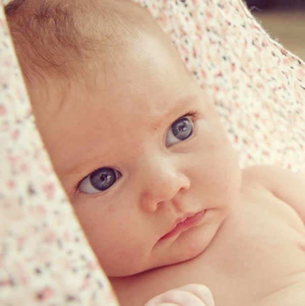 Evelynn at two months old, photo by Rachel Barkman Photography